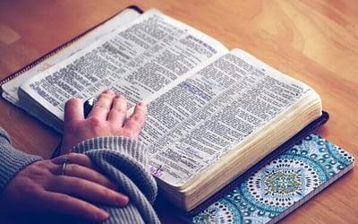 Come possiamo sapere se la Bibbia è vera?